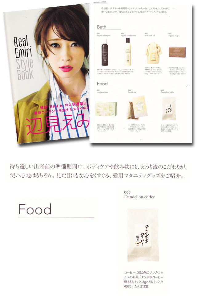 辺見えみり Style Book