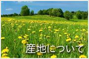 産地の変更について